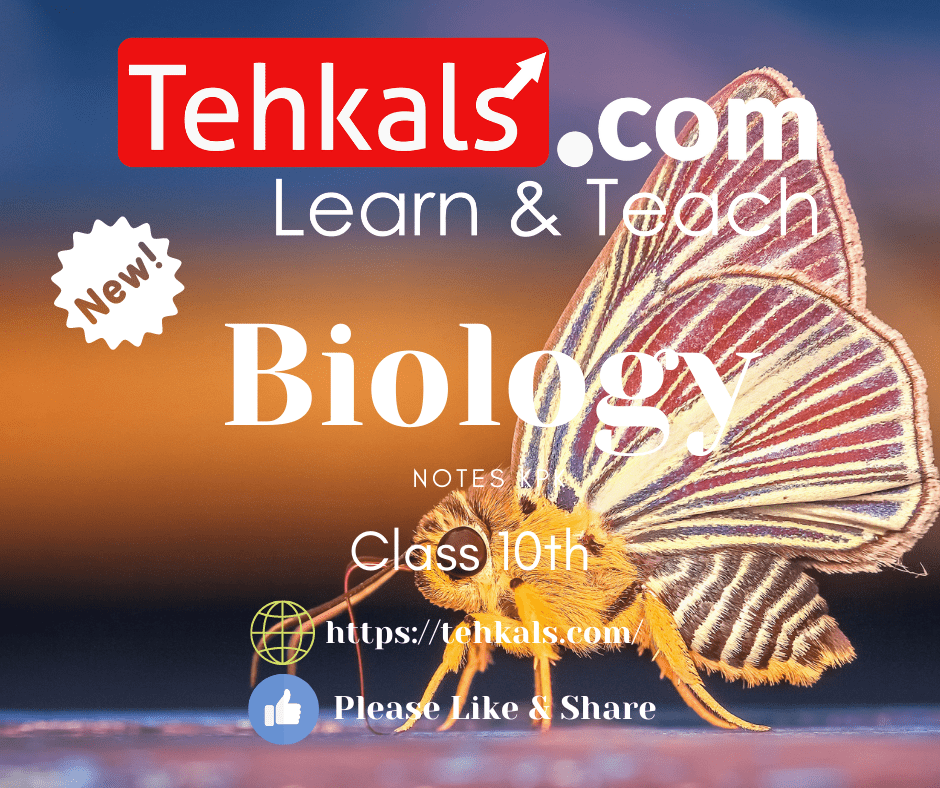 Class 10th biology notes